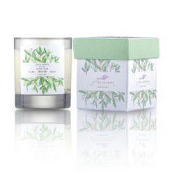 LITTLE SECRETS Olive Oil Monoi soya candle - Eνυδατικό, αρωματικό κερί με άρωμα ελαιόλαδο, monoi Ταϊτής